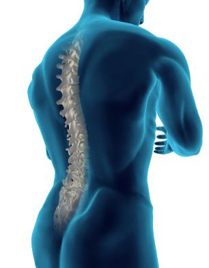 Posture et malocclusion dentaire
