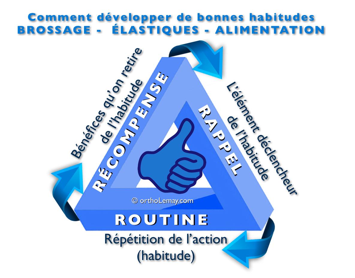 """La création de bonnes habitudes requiert un certain temps mais passe par 3 étapes d'un cycle de formation des habitudes d'après le concept de Charles Duhigg """"The habit formation loop""""."""